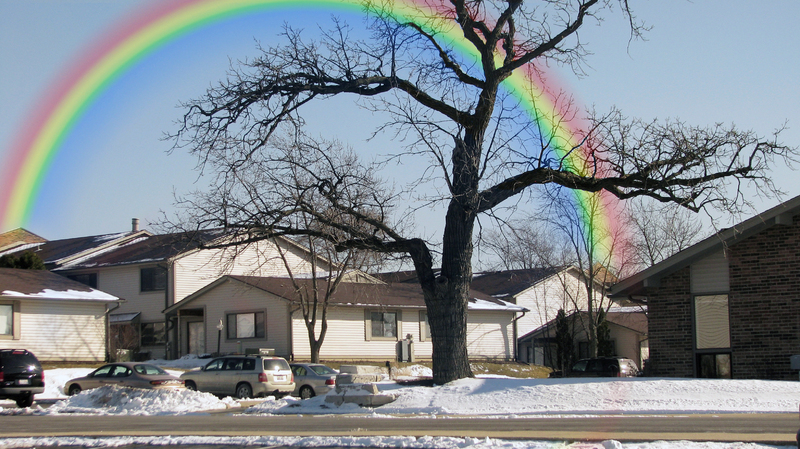 Rainbow Day!!